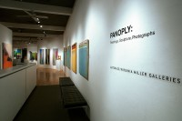 Panoply: Paintings, Photographs and Sculpture