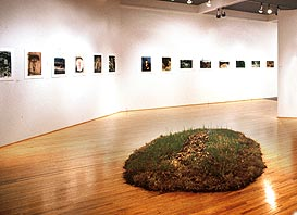 Ana Mendieta installation and 'Silueta' photos in May 1992